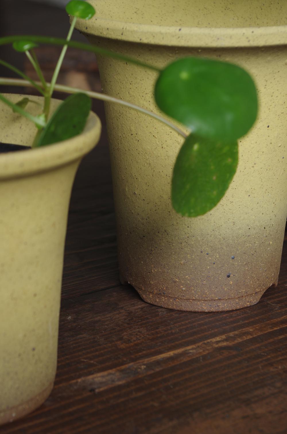 Orchid pot-3