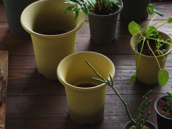 Orchid pot-8