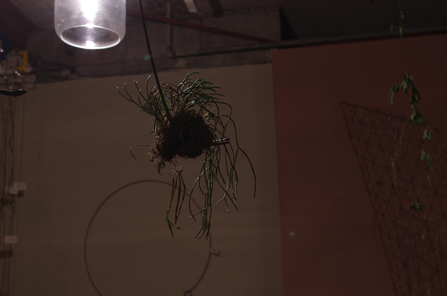 tipura-studio-ironworks-exhibition-11